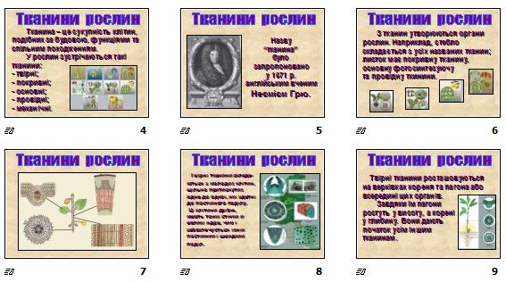 """Презентація """"Тканини рослин"""" (для 7 кл.)"""