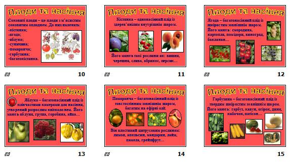 """Презентація """"Плоди та насіння"""" (для 7 кл.)"""
