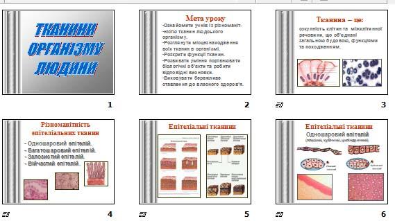 """Презентація """"Тканини організму людини"""" для 9 класу"""