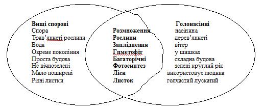 Загальна характеристика голонасінних