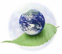 """Розробки уроків до теми """"Планетарна роль живої речовини""""  (11 клас філологічний профіль)"""