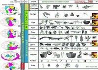 """Розробки уроків до теми """"Історичний розвиток та різноманітність органічного світу"""" (11 кл.універсальний профіль)"""