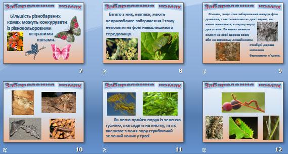 Презентація «Забарвлення комах»