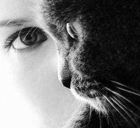 Як бачать очі тварин.