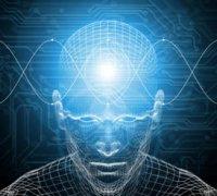 Розробки уроків до теми «Формування поведінки й психіки людини» (9 кл.)