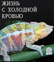 У чому різниця між ектотермними і ендотермними тваринами.