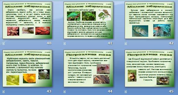 Презентація «Пристосування у тваринному світі та їх відносний характер» (для 11 кл).