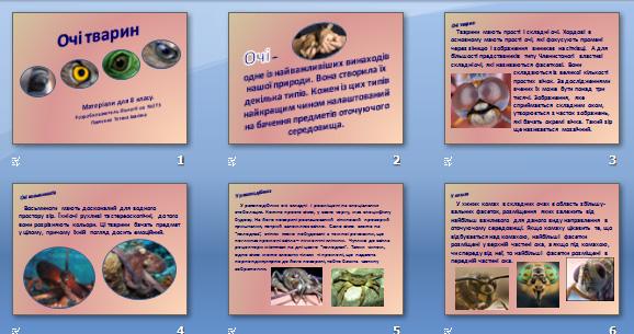 Презентація «Очі тварин» (для 8 кл.)