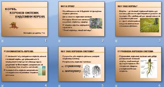 Презентація «Корінь. Кореневі системи. Видозміни кореня» (7 кл.)
