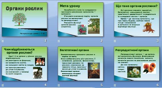 Презентація «Органи рослин» (7 кл.)