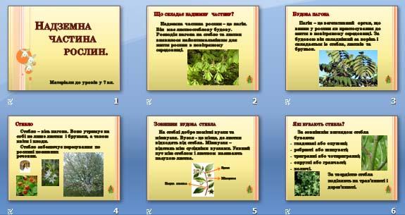 Презентація «Надземна частина рослин» (7 кл.)