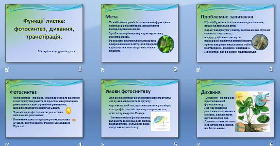Презентація «Функції листка: фотосинтез, дихання, транспірація» для 7 кл.
