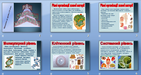 Презентація «Рівні організації живої матерії» (10 кл.)