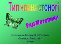 Презентація «Тип Членистоногі. Ряд Метелики»