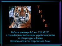 Презентація «Тигри»