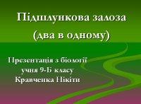 Презентація «Підшлункова залоза (два в одному)»
