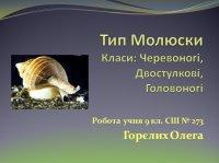 Презентація «Тип Молюски»