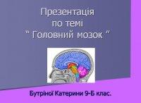Презентація «Головний мозок»
