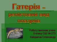Презентація «Гатерія – реліктовий вид плазунів»