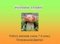 Презентація «Білий гриб»