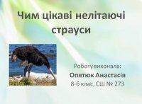 Презентація «Чим цікаві нелітаючі страуси?»