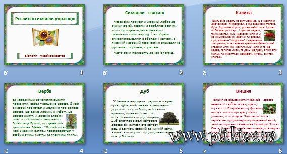 Презентація «Рослинні символи українців»
