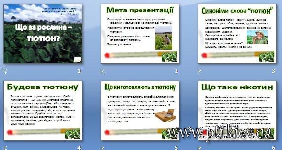 Презентація «Що за рослина – тютюн?»