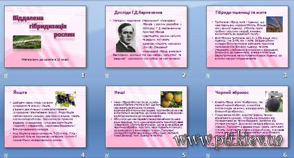 Презентація «Віддалена гібридизація рослин»