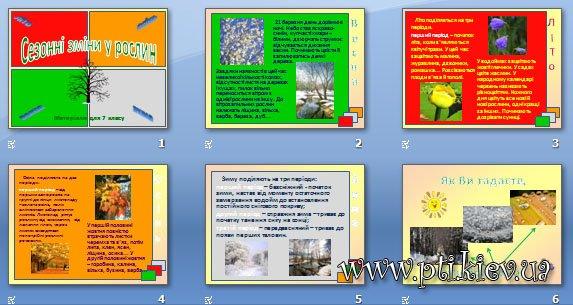 Презентація «Сезонні зміни у рослин»