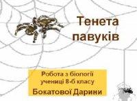 Презентація  «Тенета павуків»