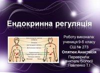 Презентація «Ендокринна регуляція»