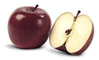 Яблуневий сад нашої душі