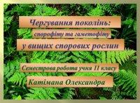 Презентація «Чергування поколінь: спорофіту та гаметофіту, у вищих спорових рослин»