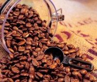 Популярність кави