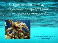 Презентація «Восьминіг – представник головоногих молюсків»