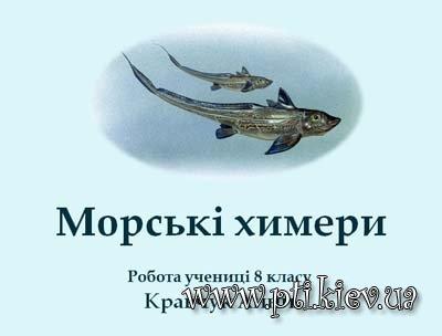 хрящових риб,