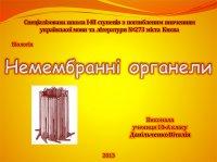Презентація «Немембранні органели»
