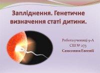 Презентація «Запліднення. Генетичне визначення статі людини»