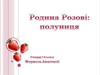 Презентація «Родина Розові: полуниця»