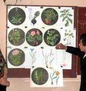 Малюнок у біології як засіб наукового пізнання природи