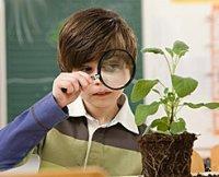 Використання нестандартних уроків - метод успішного досягнення результатів при вивченні біології