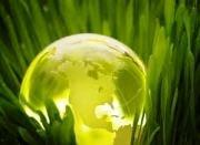 Екологічні фактори поза шкільним підручником біології