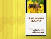Презентація «Клас Комахи: бджоли»