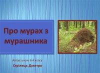 Презентація «Про мурах з мурашника»