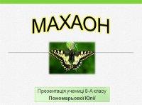 Презентація «Махаон»