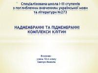 Презентація «Надмембранні і підмембранні комплекси»