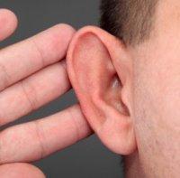 Що «чує» зовнішнє вухо?