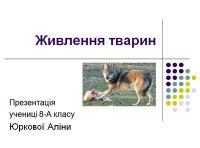 Презентація «Живлення тварин»