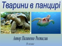 Презентація «Тварини в панцирі»