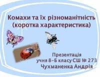 Презентація «Комахи та їх різноманітність (коротка характеристика)»